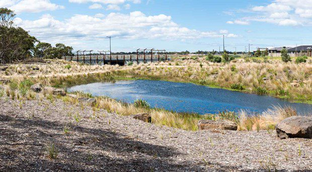 Unique Wetland Project Takes Out Landscape of the Year