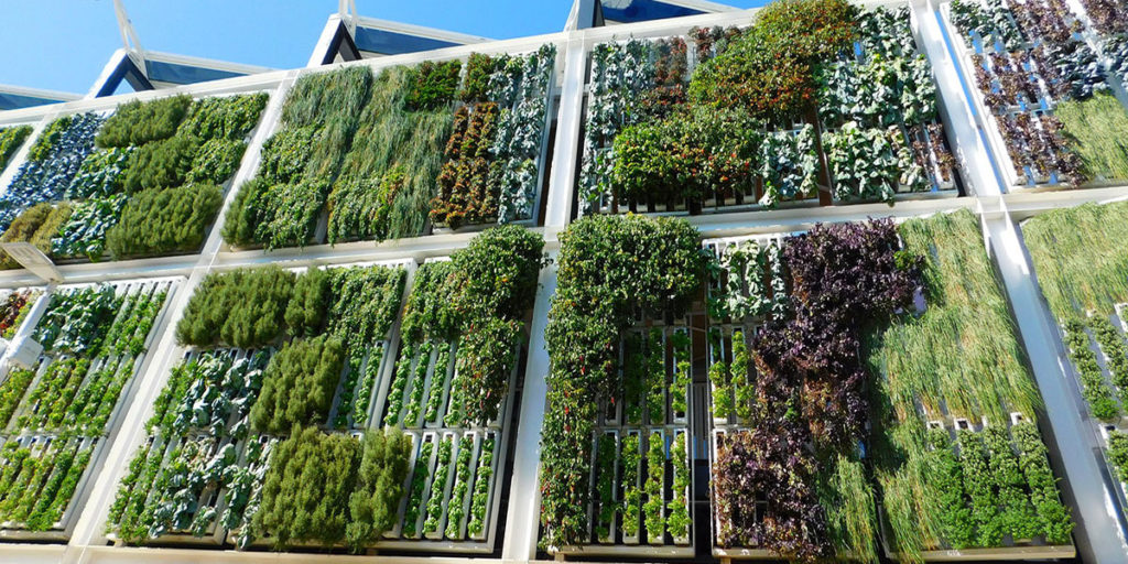 Hortitecture: The Next Wave Of High-Tech Horticultural Thinking